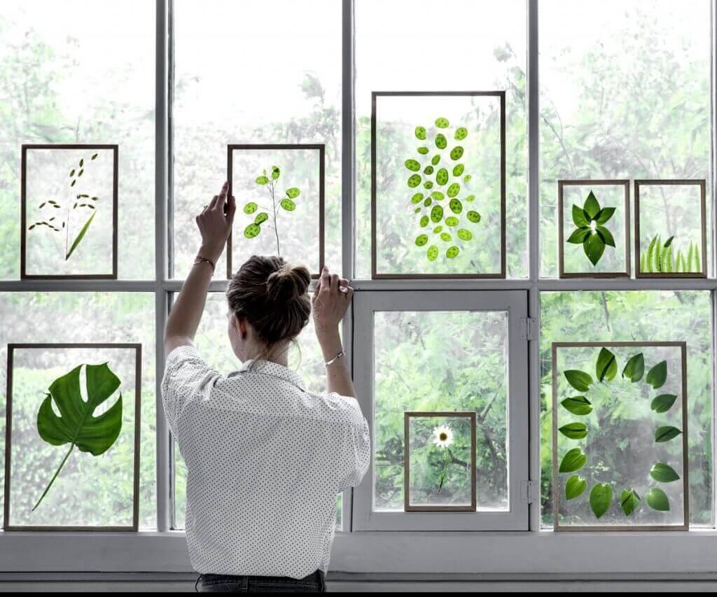 Schwebende Blätter oder getrocknete Pflanzen kommen in den transparenten Holzrahmen von Moebe besonders gut zur Geltung