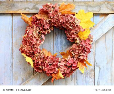 getrocknete Hortensien mit Blättern