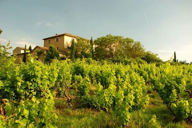 Landhaus-Provence_11549569
