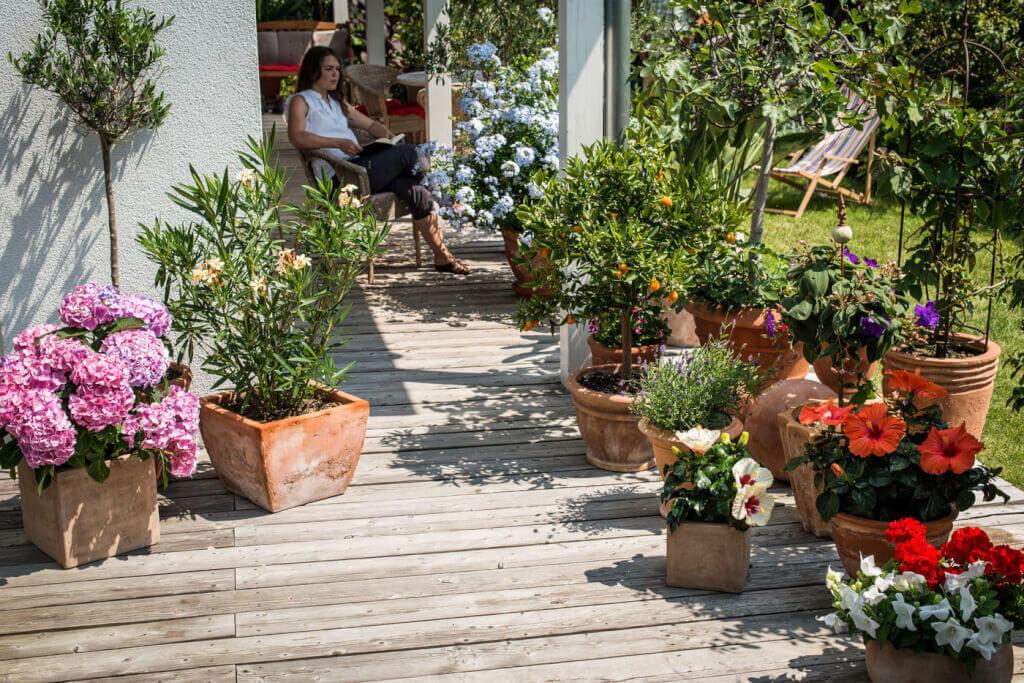 Vor allem Pflanzen, die auf Balkon und Terrasse in Kästen und Kübeln wachsen, sind für die regelmäßige Versorgung mit Flüssigdünger dankbar