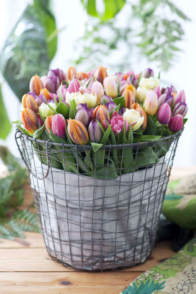 Blumen im Industrial Look: Es muss nicht immer eine Vase sein, Tulpen in zarten Farben passen wunderbar zu derben Körben aus Metall