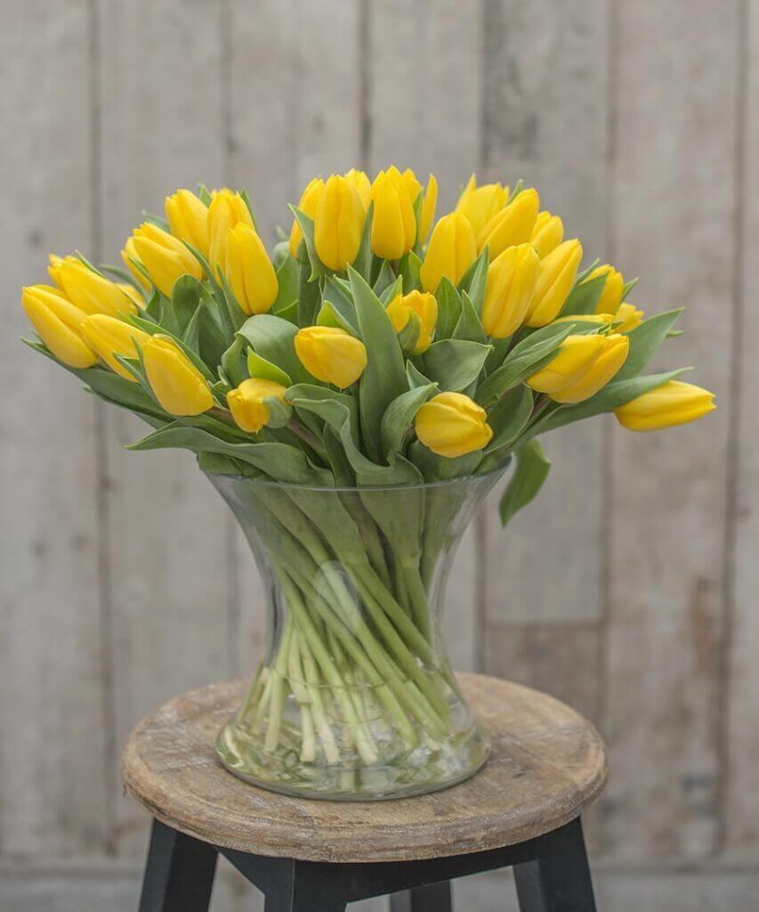 Tulpen brauchen viel Wasser. Trotzdem sollte die Vase immer nur etwa ein Drittel gefüllt sein. Bei Bedarf kann jederzeit nachgegossen werden.
