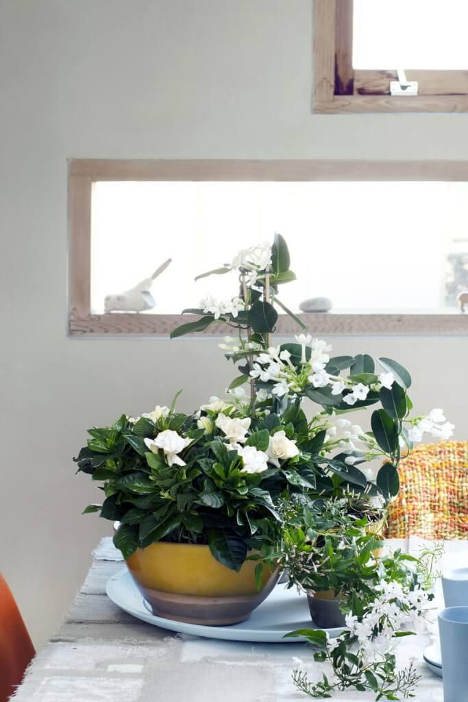 Natürliche Tischdekoration mit weißen Blüten